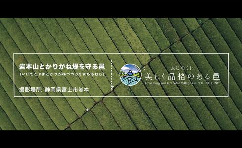thumb_iwamoto